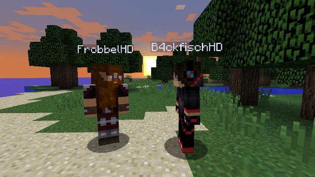 Kiddie Anatomie Des UndercoverTrolls Romric RocketMinersde - Minecraft nitrado server gruppen erstellen